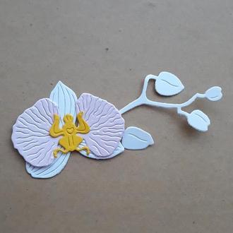 вырубка Ветка орхидеи, Высечки для скрапбукинга