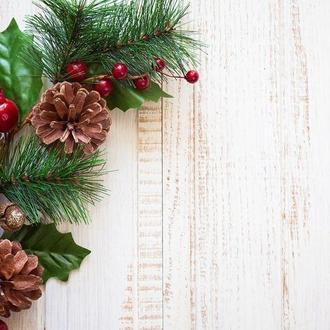 Виниловый фотофон светлое дерево и новогодняя ветвь