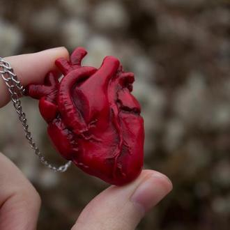 Кулон анатомическое сердце, сердечко из полимерной глины, подарок на День Святого Валентина