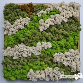 Картина со стабилизированным мхом «Лесные узоры»