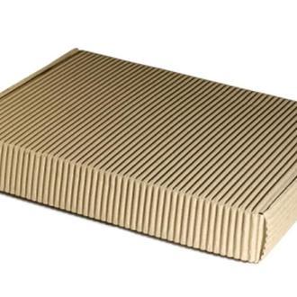 Плоская коробка из двухслойного гофрокартона 24х17х5 см