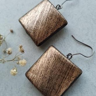 Прямоугольные серьги металлик цвет платина