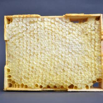 Медова сота 435 г —  із подарунковою коробкою