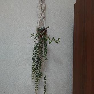 Подвесное кашпо в технике макраме для комнатных цветов