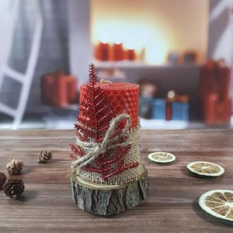 Живая свеча на деревянном спиле, новогодняя композиция