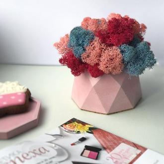 Бетонні кашпо горщики для квітів з стабілізованим мохом 7*10 см V1 / кашпо из бетона для цветов
