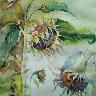 Картина акварелью « Подсолнухи »