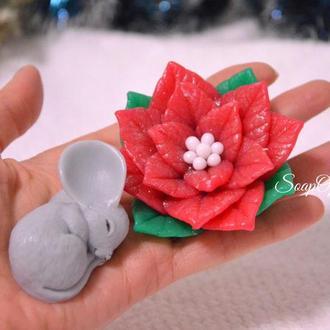 Мышка и пуасенттия