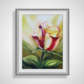 """Картина """"Роза"""", масло, холст"""