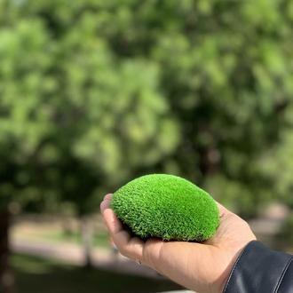 Стабілізований мох кочковой 500 грам
