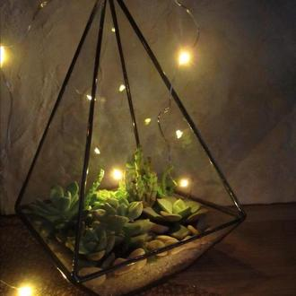 Флорариум пирамида с суккулентами подвесная