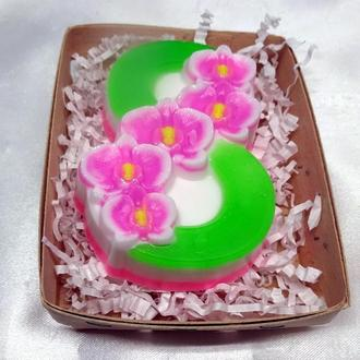 Подарок на 8 Марта. Орхидеи