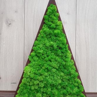 Треугольная елочка из мха (ягель), треугольник с мхом