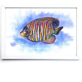 """Картина в детскую """"Рыбка Ангел"""" 20х30 см"""