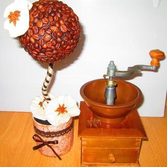 Кофейное дерево - топиарий из зерен кофе. Оригинальный подарок!