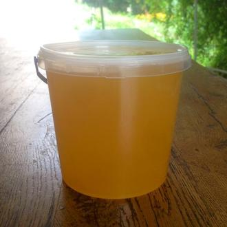 Мёд цветочный натуральный. Подсолнечный. Своя пасека.