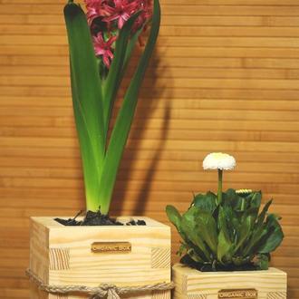 Ящики, боксы для цветов, растений, рассады Organic Box. Ручная работа.