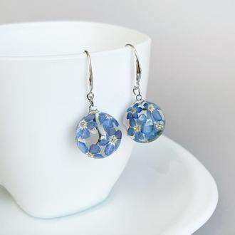 Серьги с незабудками. Украшения из настоящих цветов. Синие незабудки. (модель № 2477) Glassy Flowers