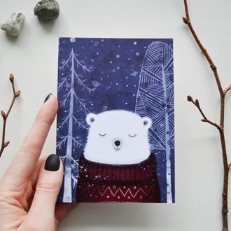 Открытка Медведь Кристоф