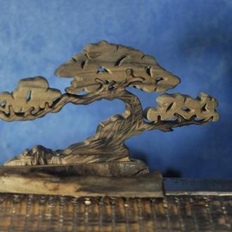 Бонсай из дерева