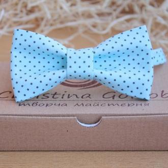 Бабочка -галстук бирюзовый в мелкий горошек