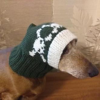 Шапка з черепами для собаки