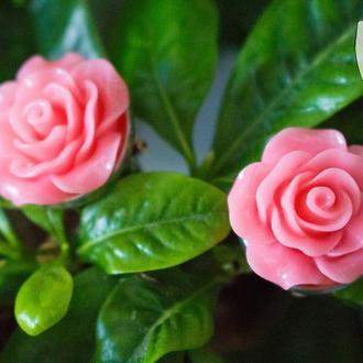 """Клипсы """"Розовые розы"""""""