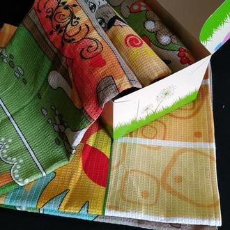 Набор полотенец на кухню Кошкин дом