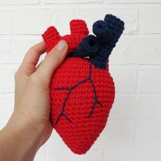 Реалистичное сердце, подарок на День влюбленных, анатомическое вязаное сердце, подарок медику