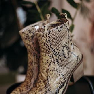 Ботинки демисезонные женские Aura Shoes 96611400