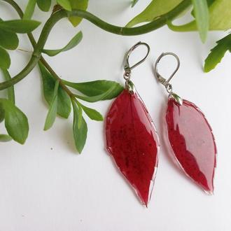 Сережки з бордовим листям в ювелірній смолі
