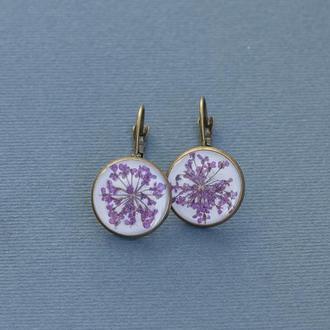 Сережки Фіолетовий цвіт