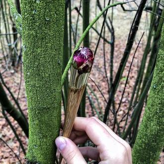 """""""Червона троянда"""", деревянная шпилька для волос, палочка для волос, украшения с живыми цветами, пода"""