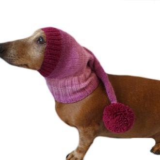 Шапка Санти для маленької собаки,новорічна шапка для собаки,шапка для такси