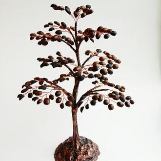 Дерево из зёрен кофе