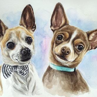 Портрет двух домашних любимцев, акварель, А4