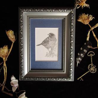Птица #2  графика миниатюра
