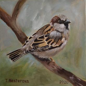Птах горобець