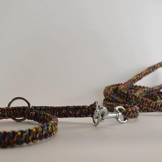Choke collar & leash, Комплект поводок и ошейник-удавка