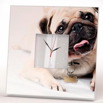 """Часы на стену с фото собаки """"Мопс"""""""