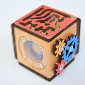 Бизикуб-головоломка  5+