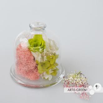 Мини-колба со стабилизированными растениями и розой «Unusual flower»