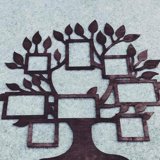 Семейное дерево 8 фото