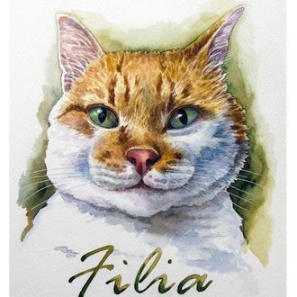 Акварельный портрет кота на заказ по фото. Портрет домашнего животного.