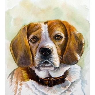Акварельный портрет собаки на заказ по фото. Портрет домашнего животного