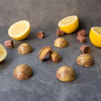 Лимонный курд в молочном шоколаде 6шт