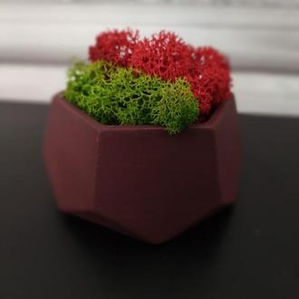 Горшок для цветов,бетонное кашпо,кашпо для кактусов, кашпо под суккулент, кашпо под мох