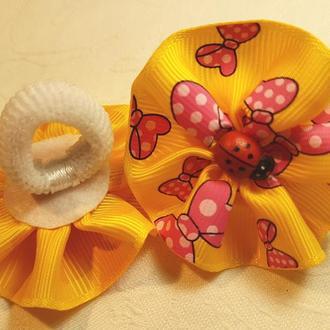 """Резинка для самых маленьких """"Ladybird"""" желтая"""