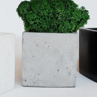 Горшок из бетона с мхом, скандинавский мох в кашпо