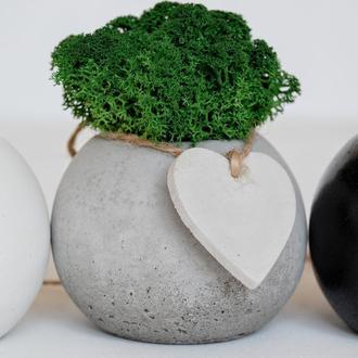 Кашпо из бетона с мхом, скандинавский мох в горшке